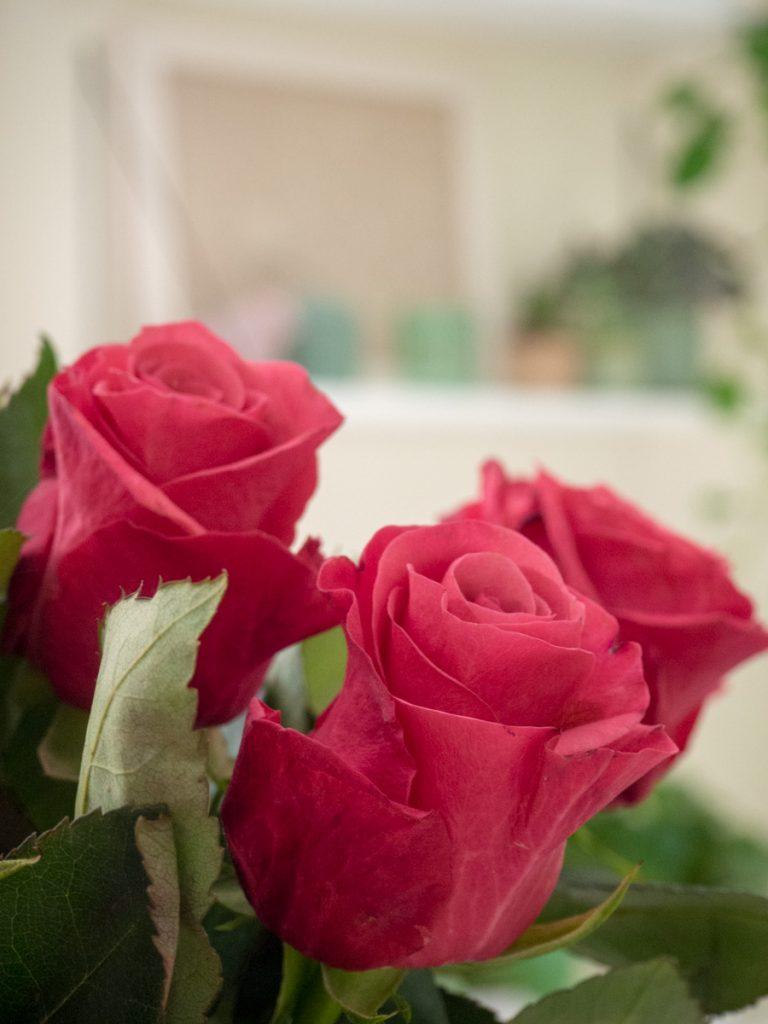 Un Jour de Neige - un bouquet de roses