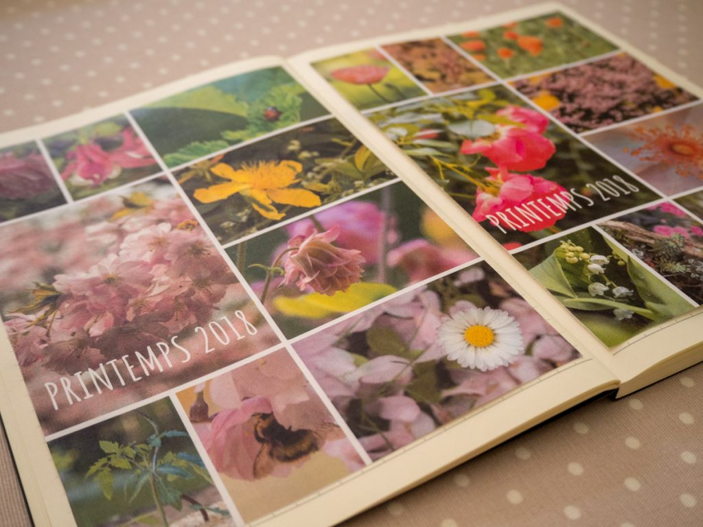Un Jour de Neige - La mosaïque du printemps dans mon carnet de jardin