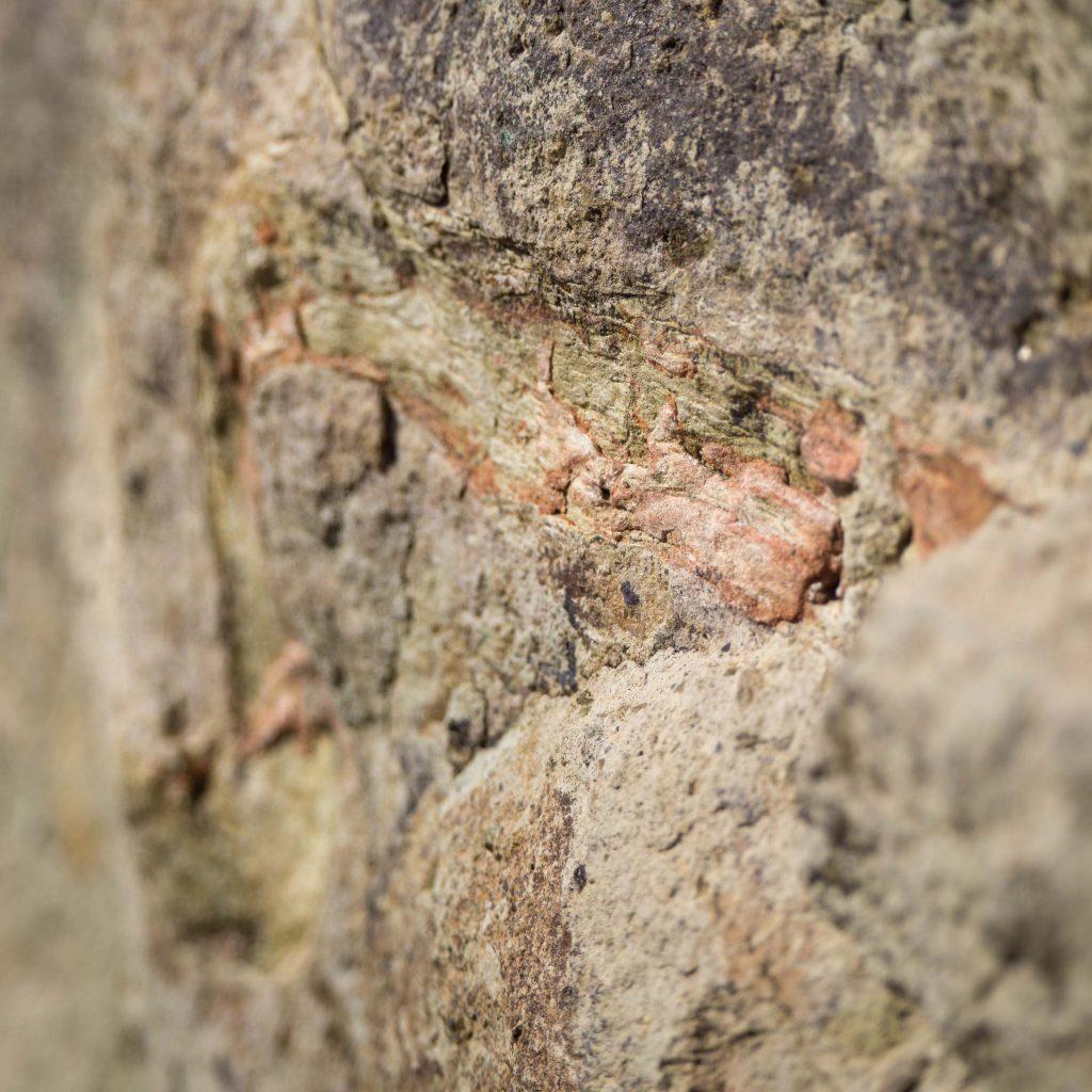 Un Jour de Neige - Carnet d'Amérique - Trail of the fossils, Clarno, Oregon