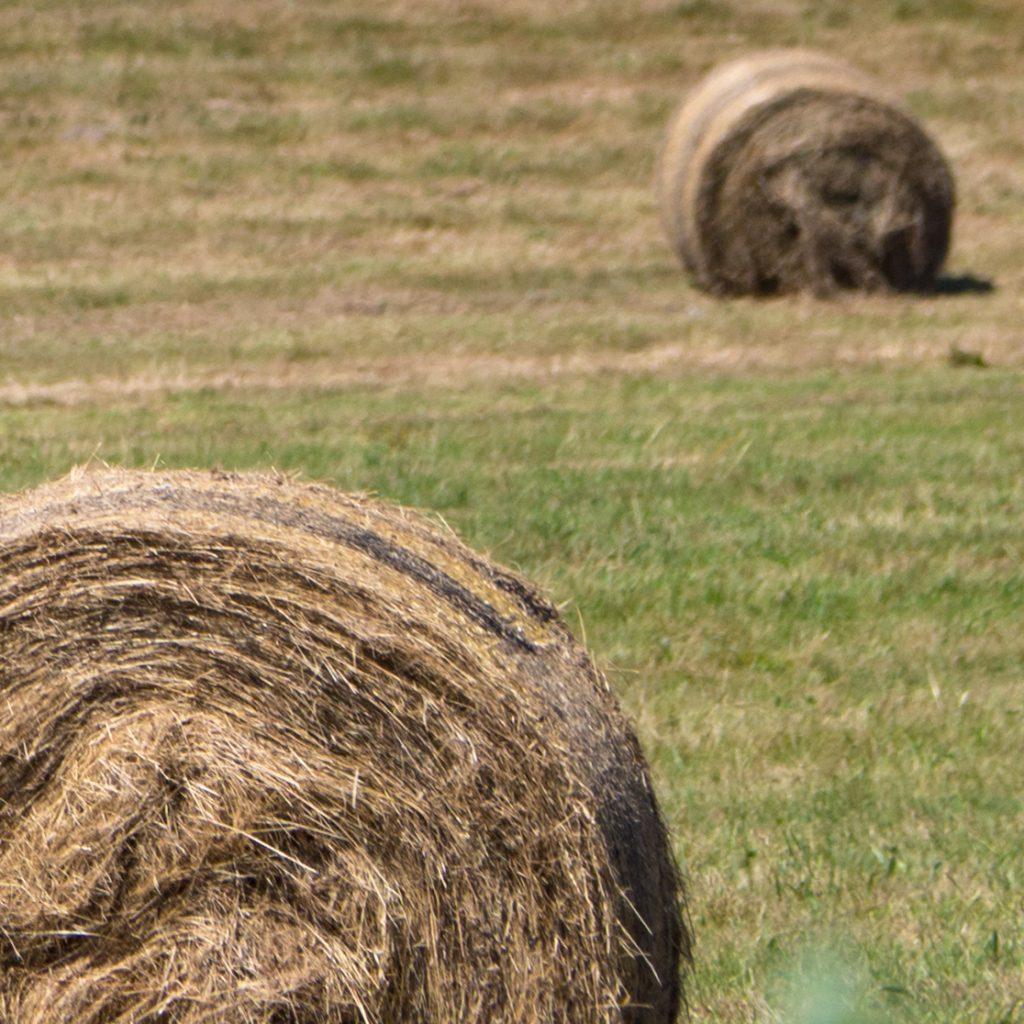 Défis photo en vacances - Défi no 49 : le cadrage en coin - sur la route des vacances