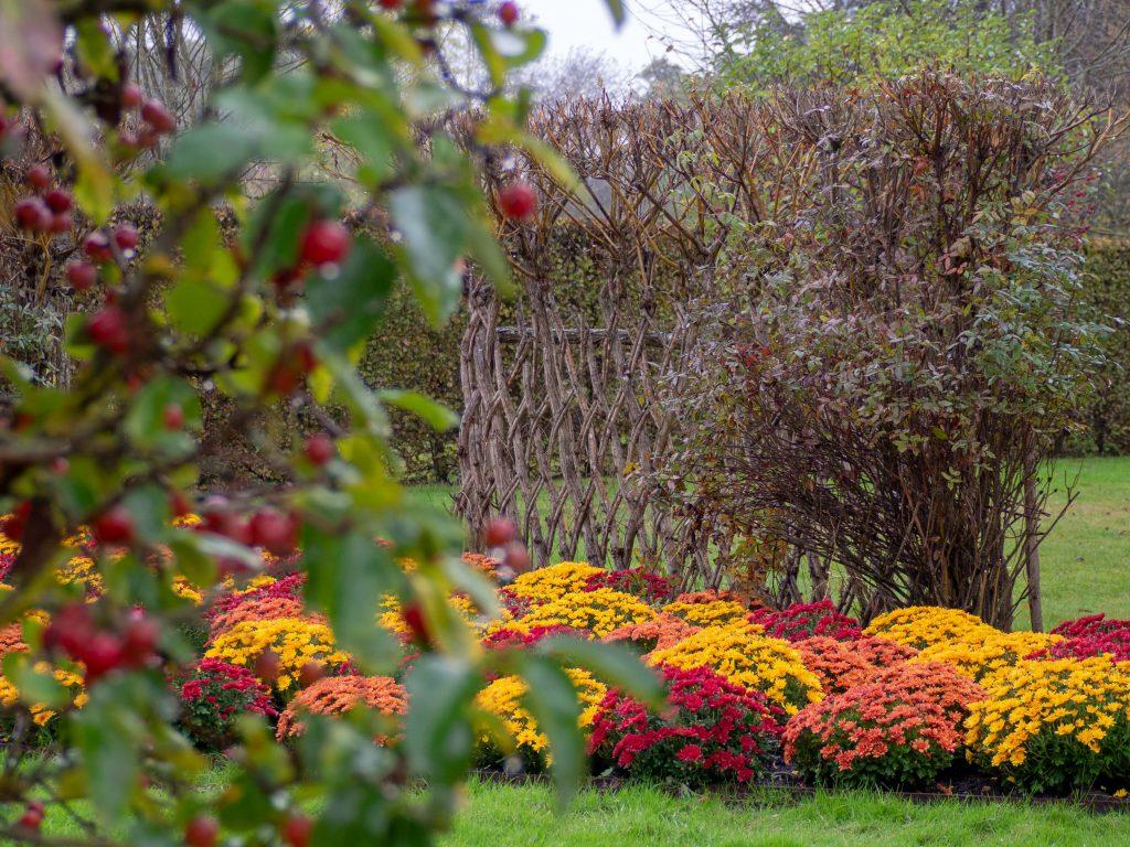 L'automne au château de Cheverny - Un Jour de Neige