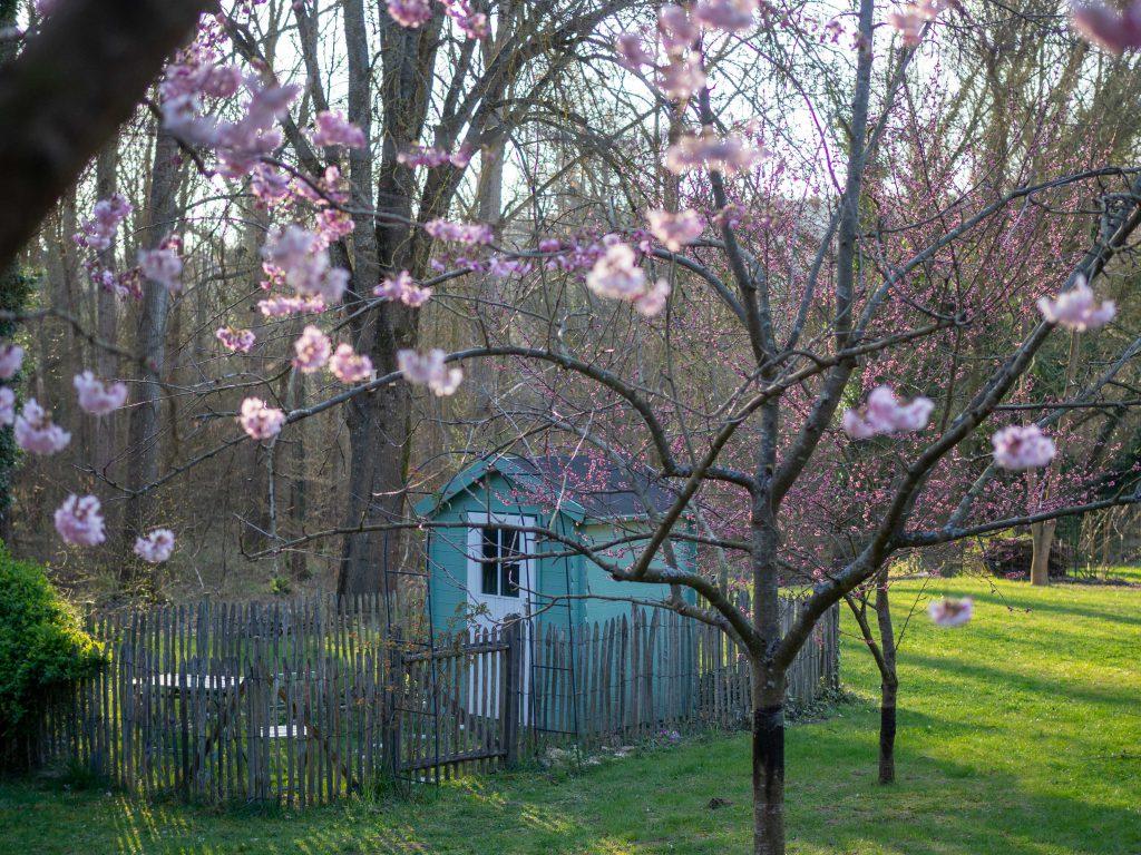 Un Jour de Neige - Un dimanche après-midi de printemps