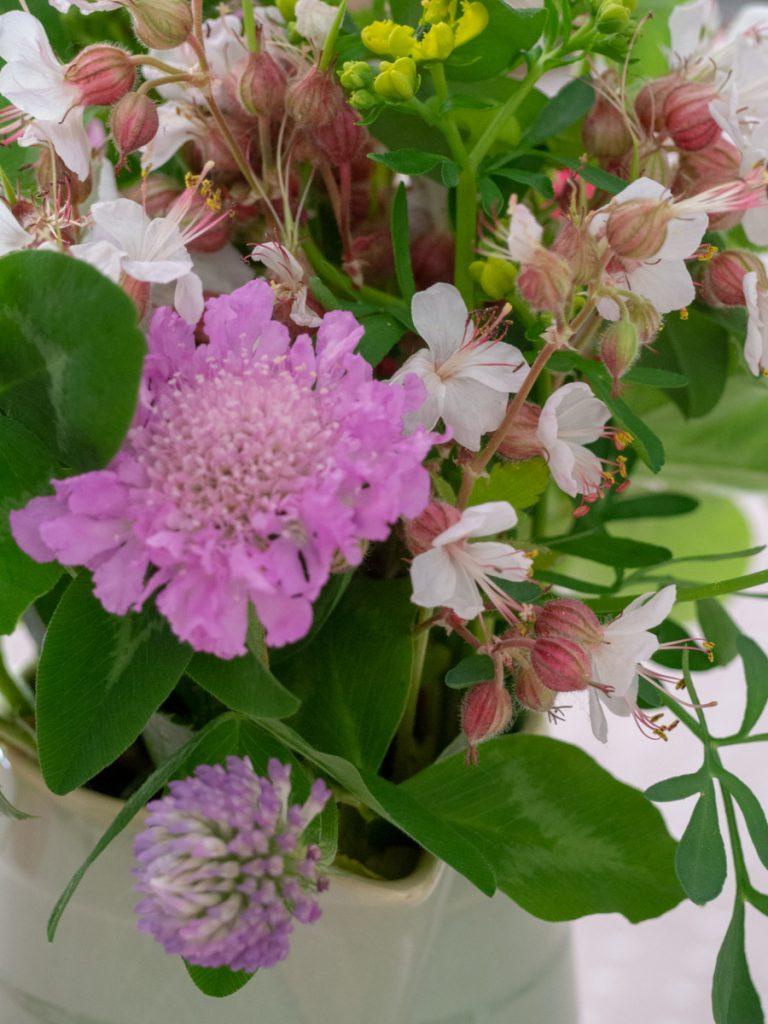 Petit carnet du dimanche - Bouquet champêtre