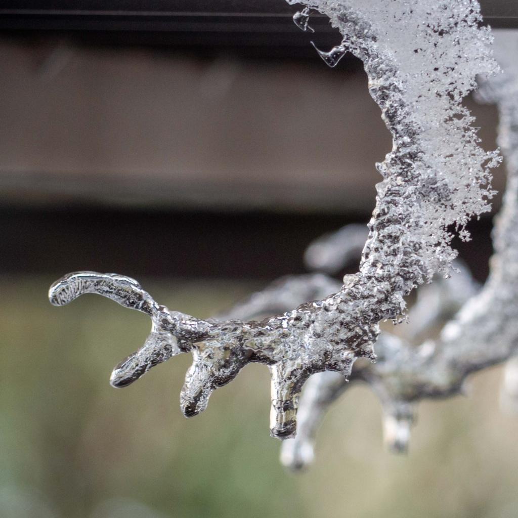 Un Jour de Neige - Projet photo 365 - février 2021