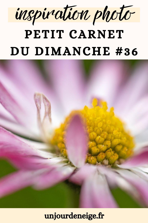Inspiration photo   Carnet du dimanche #36