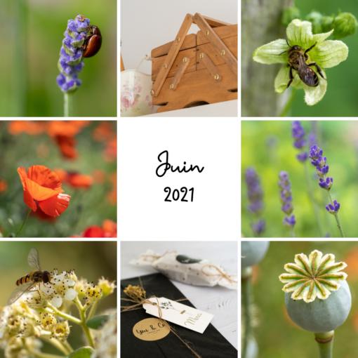 Projet photo 365 - Juin 2021